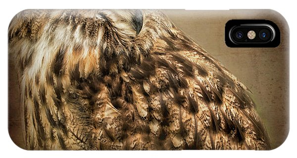 The Watchful Eye IPhone Case