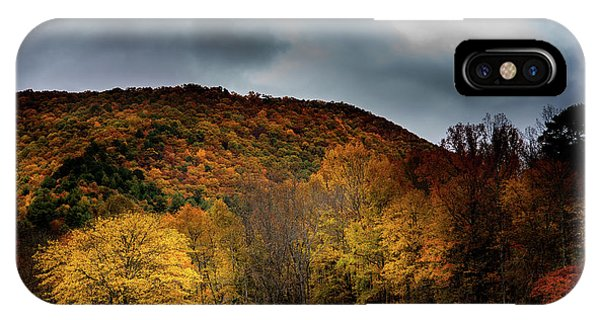 IPhone Case featuring the photograph The Yellow Tree by Greg Mimbs