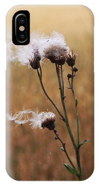 Thistle Down IPhone Case
