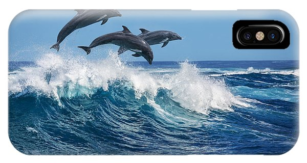 Dolphin iPhone Case - Three Beautiful Dolphins Jumping Over by Willyam Bradberry