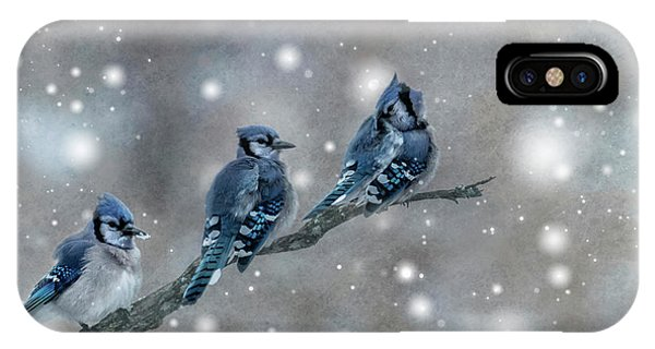 Three Blue Jays In The Snow IPhone Case