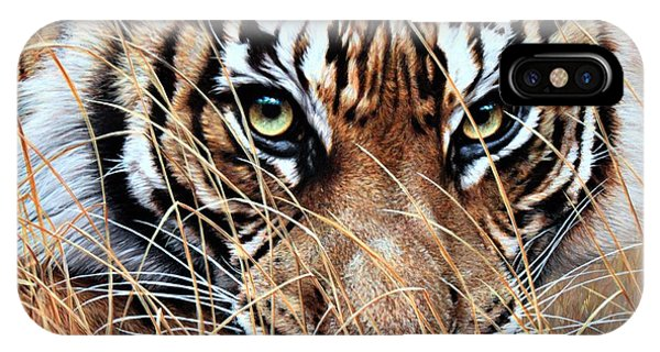 IPhone Case featuring the painting Tiger Eyes By Alan M Hunt by Alan M Hunt