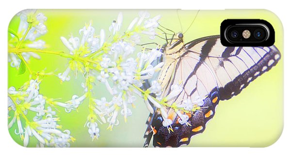 Tiger Swallowtail Butterfly On Privet Flowers IPhone Case