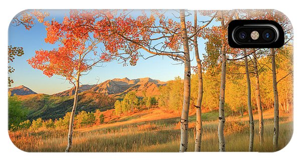 Timp With Fiery Aspens IPhone Case