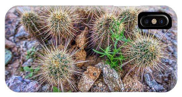 Tiny Cactus IPhone Case