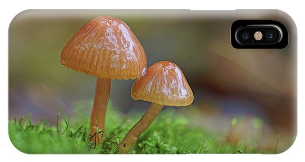 IPhone Case featuring the photograph Tiny Fungi by Daniel Reed