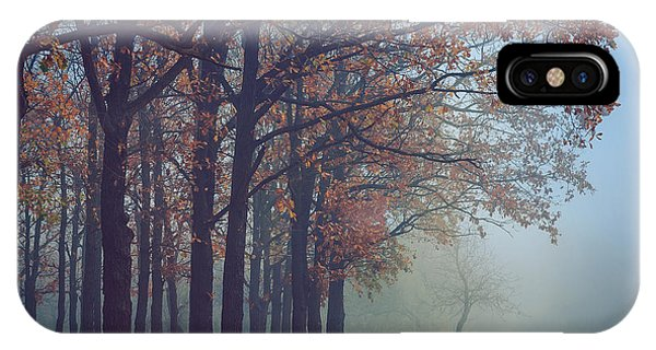 Past iPhone Case - Toned Picture Of Sad And Mystery Autumn by Dioniya