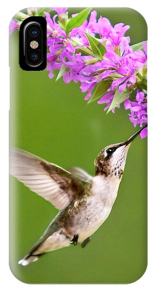 Humming Bird iPhone Case - Touched by Christina Rollo