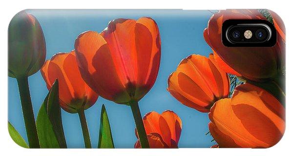 Towering Tulips IPhone Case