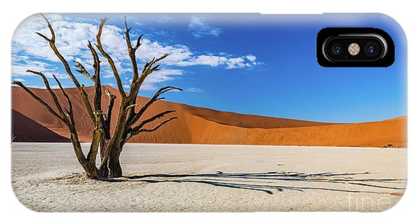 Tree And Shadow In Deadvlei, Namibia IPhone Case