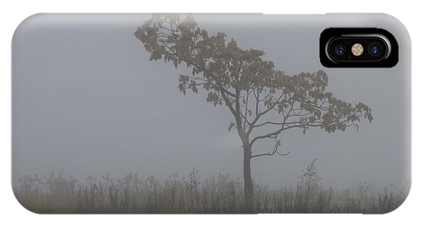 Tree In Fog IPhone Case