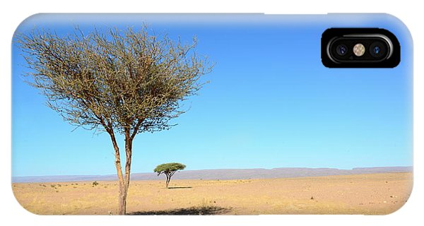 Death Valley iPhone Case - Tree In Sahara Desert In Morocco Near by Procyk Radek