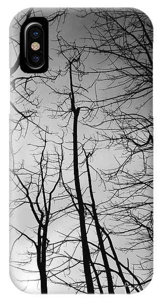 IPhone Case featuring the photograph Tree Series 3 by Jeni Gray