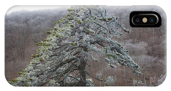 Tree With Hoarfrost IPhone Case