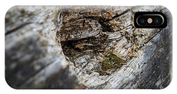 Tree Wood IPhone Case