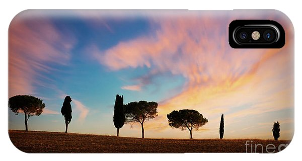 Umbrella Pine iPhone Case - Trees At Sunset In Tuscany by Delphimages Photo Creations