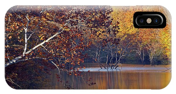 IPhone Case featuring the photograph Trees At The Water's Edge by Mike Murdock