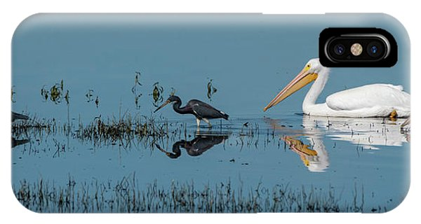 Tricolored Herons And American White Pelicans IPhone Case