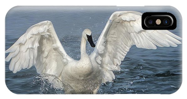 Trumpeter Swan Splash IPhone Case