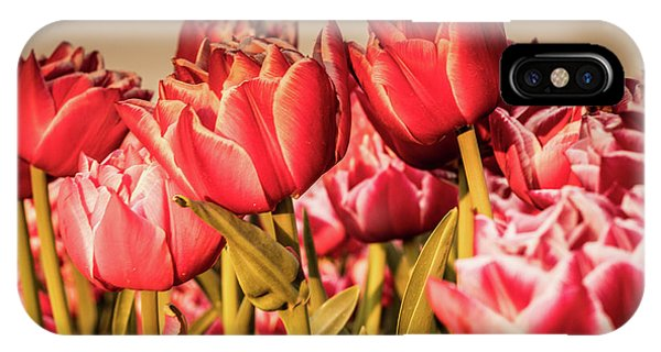 IPhone Case featuring the photograph Tulip Fields by Anjo Ten Kate