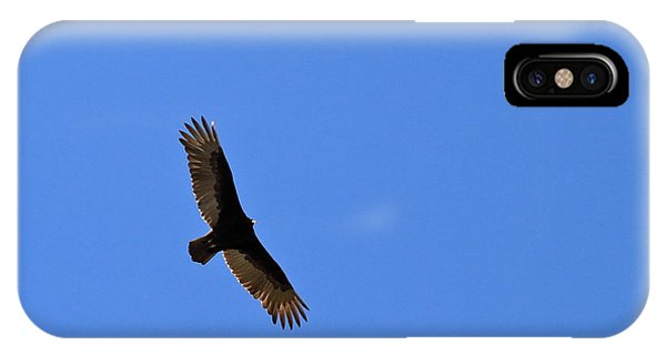 Turkey Vulture Soaring IPhone Case
