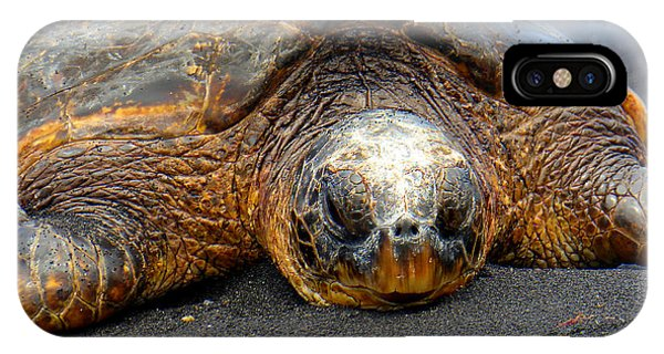 Turtle Rest Stop IPhone Case