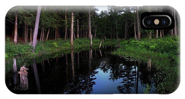 Twilight iPhone Case - Twilight Pool by Jerry LoFaro
