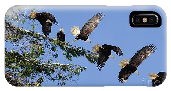 iPhone Case - Two Bald Eagles  by Bob Christopher