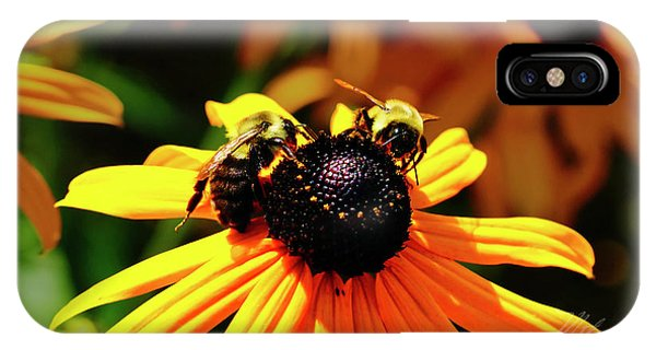 IPhone Case featuring the photograph Two Bees by Meta Gatschenberger