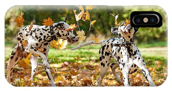 Adorable iPhone Case - Two Dalmatian Dogs Playing With Leaves by Grigorita Ko