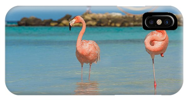 Salt Water iPhone Case - Two Flamingos On The Beach by Masterphoto