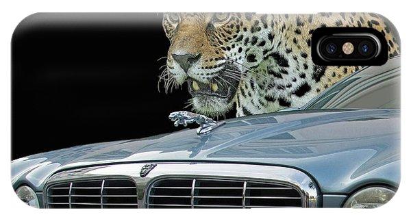Two Jaguars 2 IPhone Case