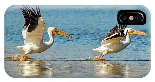 Two Pelicans Taking Off IPhone Case