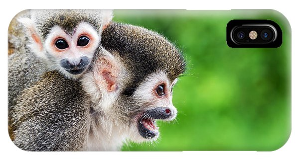 Colombian iPhone Case - Two Squirrel Monkeys, A Mother And Her by Jess Kraft