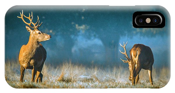 Two Stags IPhone Case