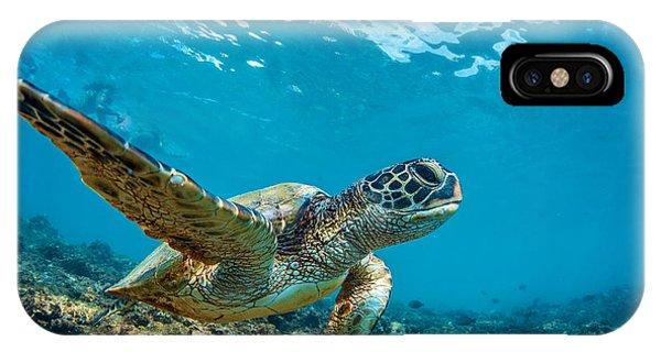 Barrier Reef iPhone Case - Underwater Marine Wildlife Postcard. A by Willyam Bradberry