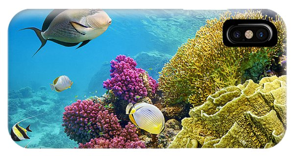 Under Water iPhone Case - Underwater Scene With Coral Reef And by John walker