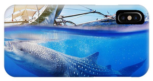 Fins iPhone Case - Underwater Shoot Of A Whale Shark by Max Topchii