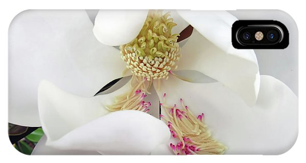 Unfolding Beauty Of Magnolia IPhone Case