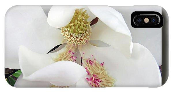 Unfolding Beauty Of Magnolia IPhone Case