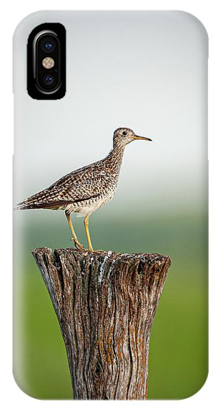 IPhone Case featuring the photograph Upland Sandpiper On Fence Post by Jeff Phillippi