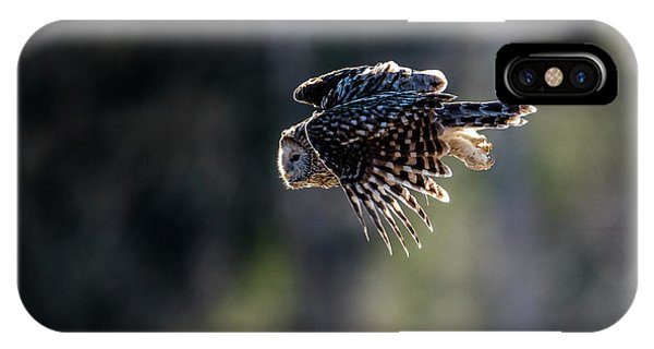 Ural Owl Flying Against The Light To Catch A Prey  IPhone Case