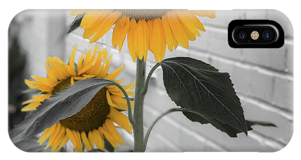 Urban Sunflower - Black And White IPhone Case