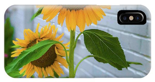 Urban Sunflower IPhone Case