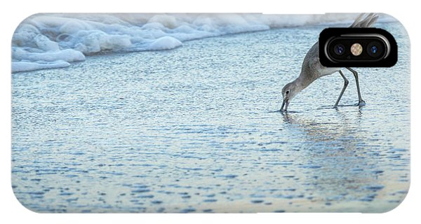 Usa, Florida A Willet Digs In The Sand Phone Case by Margaret Gaines