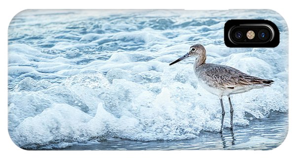 Usa, Florida A Willet, Tringa Phone Case by Margaret Gaines