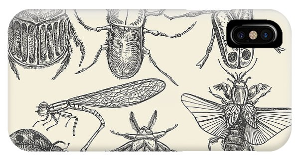 Zoology iPhone Case - Vector Set Insects In Vintage Style by Horg