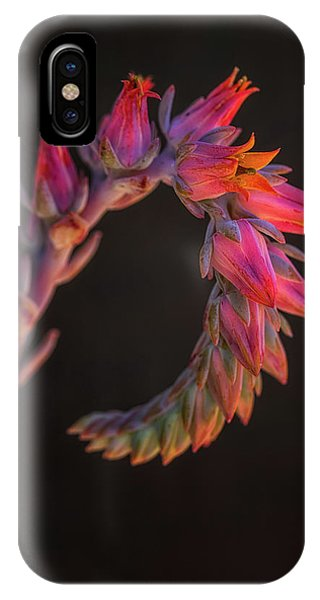 Vibrant Arc IPhone Case