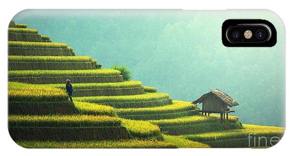 Horticulture iPhone Case - Vietnam Rice Fields On Terraced Of Mu by Sasintipchai