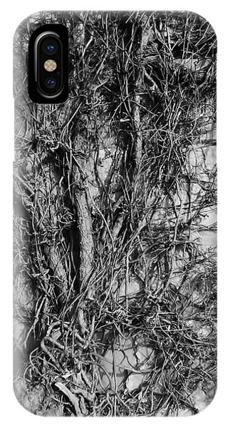 IPhone Case featuring the photograph Vine Highway by Jeni Gray